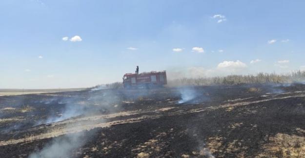Kulu'da 3 ayrı yerde çıkan ekin yangınında 50 dekar alan yandı