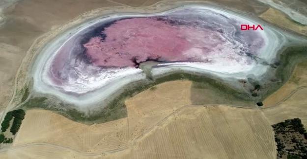 Kulu'da Küçük Göl, kuruyunca pembeye büründü