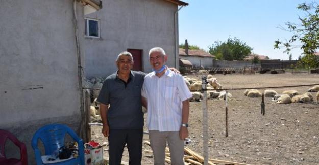 İsveç'teki gurbetçilerden memleketleri Kulu'ya 195 kurban yardımı