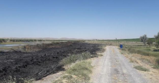 Kulu'da sazlık yangını büyümeden söndürüldü