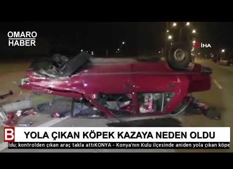 YOLA ÇIKAN KÖPEK KAZAYA NEDEN OLDU; KONTROLDEN ÇIKAN ARAÇ TAKLA ATTI